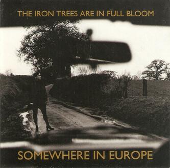 040-SIE-irontrees